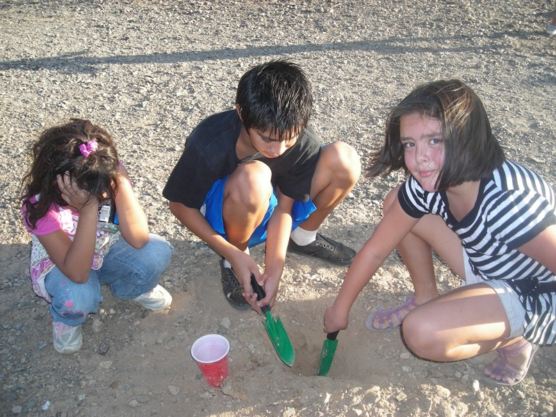 Children from Casa de Paz Sahuaro set pitfall traps