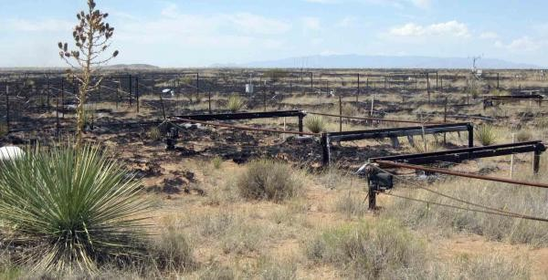 Wildfire damage to the nighttime warming experiment at the Sevilleta LTER