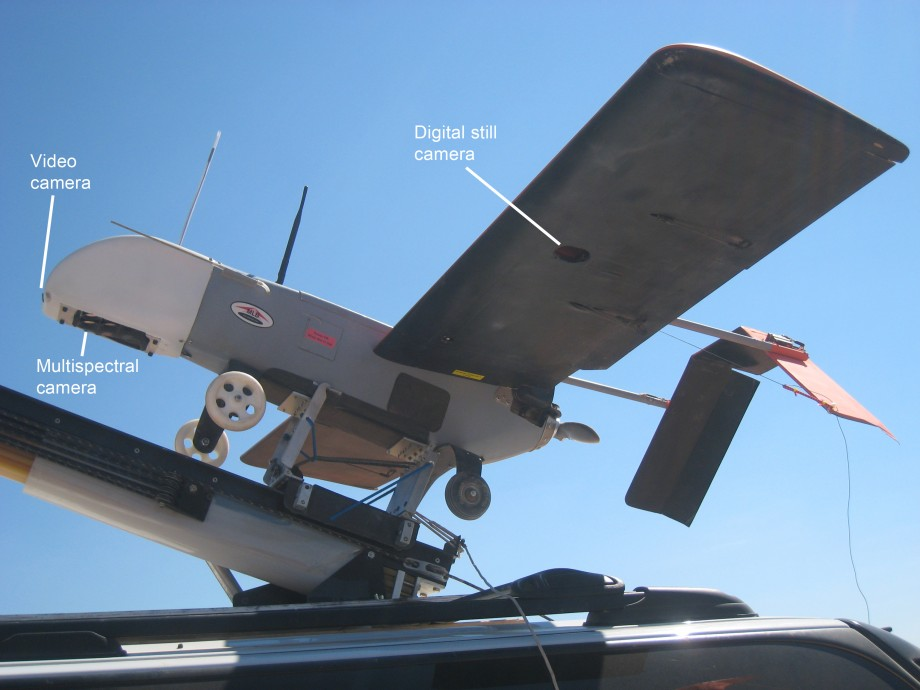 Bat-3 UAV closeup