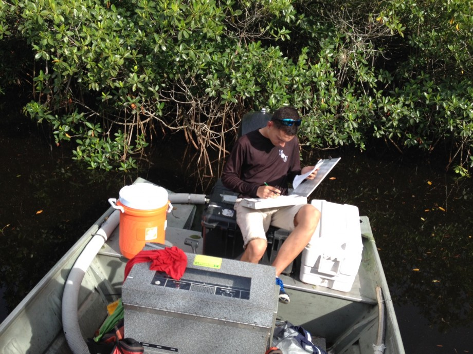 recording fish data