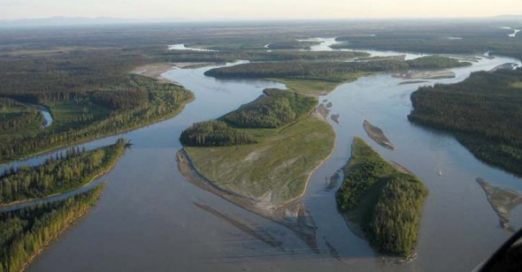 Aerial view of the braided Tanana River