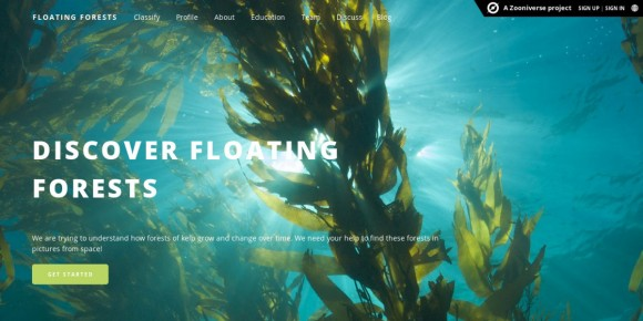 The Floating Forests website