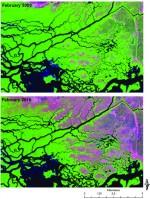 February 2009 and 2010 Landsat TM imagery of Shark River, Everglades Natl. Park