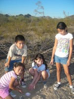 Children from Casa de Paz Sahuaro set pitfall traps