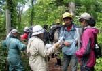Field session in Uryu Experimental Forest of Hokkaido University, Japan