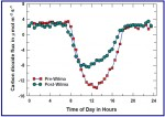Figure 3. Average diurnal carbon dioxide fluxes for 30 days