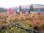 Writers and scientists ponder the Caribou-Poker Creek landscape
