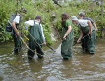 Middle school students collecting fish at the Coweeta Hydrologic Laboratory LTER