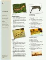 Crustaceans fact sheet