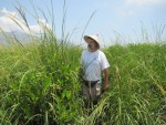 Steven Pennings in tall Spartina grass