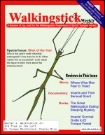 """Walkingstick Weekly""— Background reading materials"